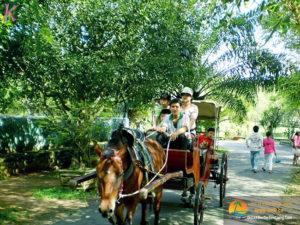 Tour du lịch đi xe ngựa trên đường làng ở Bến Tre - Hotline: 0918.158.995