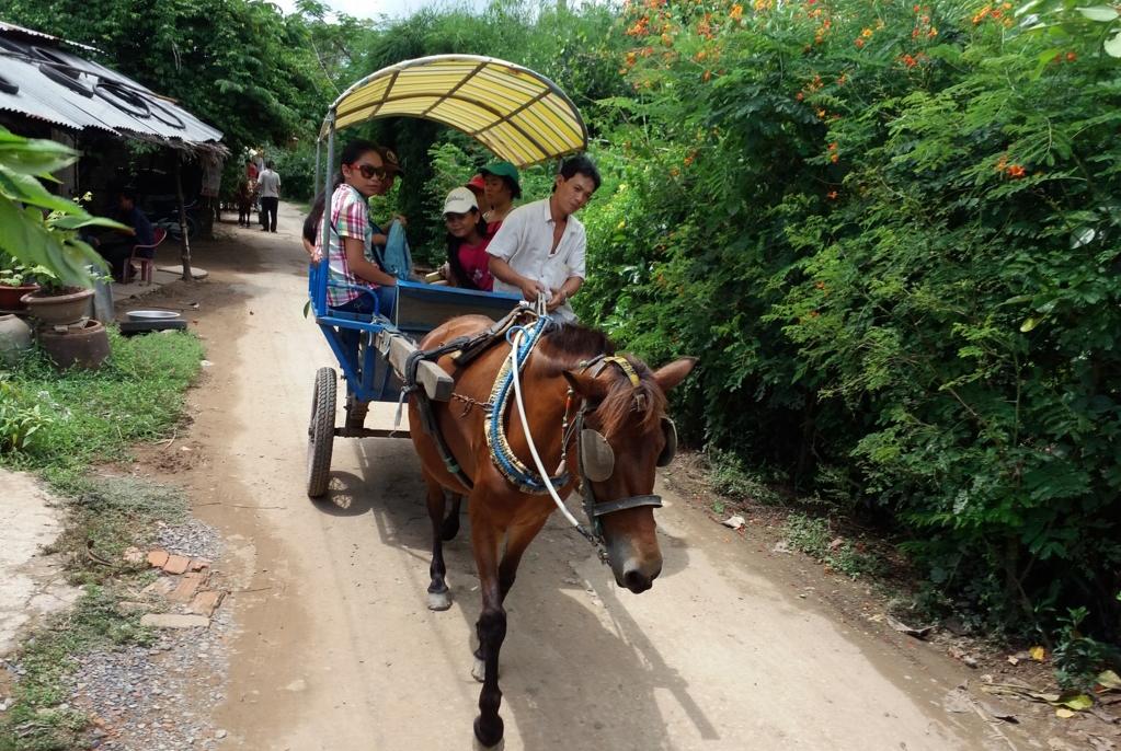 Tour du lịch đi xe ngựa trên đường làng