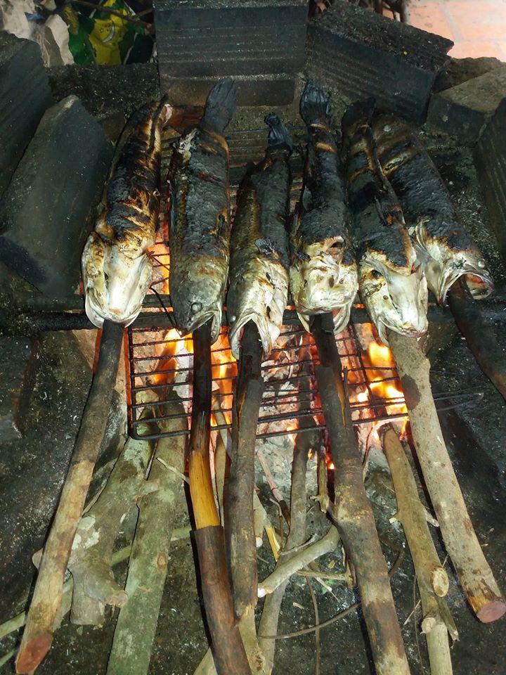 Thưởng thức món cá lóc nướng trui - Tour du lịch tát mương bắt cá ở Tiền Giang
