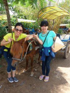 Đi xe ngựa Bến Tre Tiền Giang