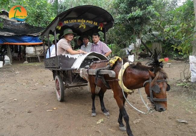Đi xe ngựa trên đường làng - Du lịch Bến Tre Tiền Giang