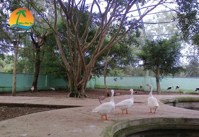 Khu thuần dưỡng chim, thú - Du lịch Tiền Giang