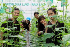 Vườn cây online Phú An Khang