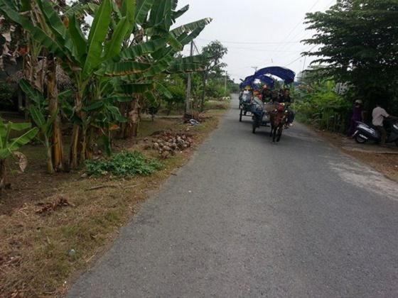 Đi xe ngựa trên đường làng