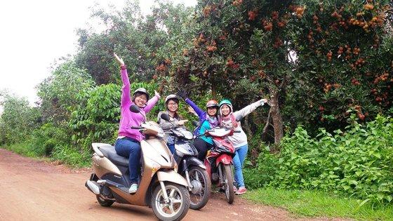 Tham quan vườn trái cây Tân Phú Bến Tre