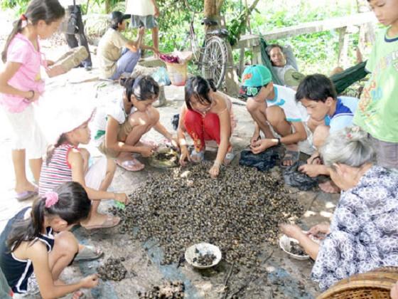 Đặc sản ốc gạo tại Cồn Phú Đa - Bến Tre