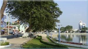 Hồ Trúc Giang - Bến Tre