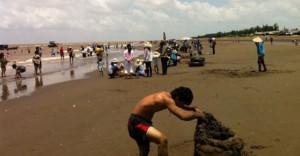 Bãi biển Cồn Bửng - Thạnh Phú Bến Tre