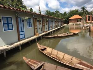 Hồ cá trong khuôn viên của Điền lan thôn Trang