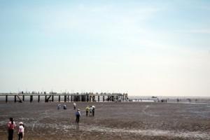 Biển Tân Thành ở Gò Công Tiền Giang