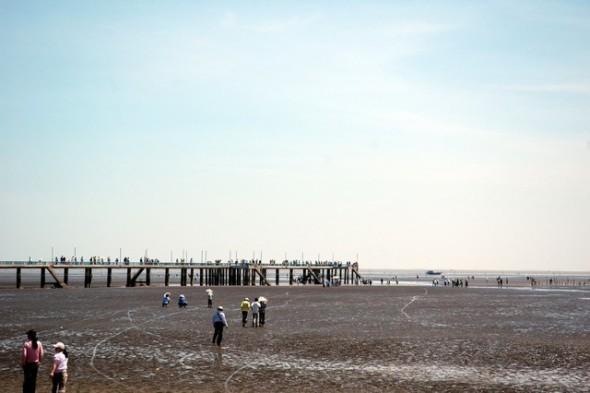 Biển Tân Thành ở Gò Công Tiền Giang - Những điểm du lịch mới nhất ở Miền Tây